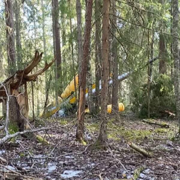Helikopterolyckan och haveriutredare i skogsmiljö