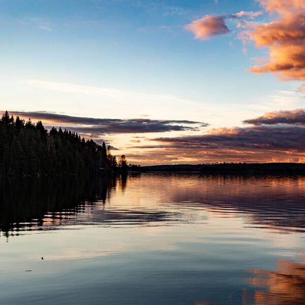 Söndag kväll 16/5, vid sjön i Lillsved Jämtland.