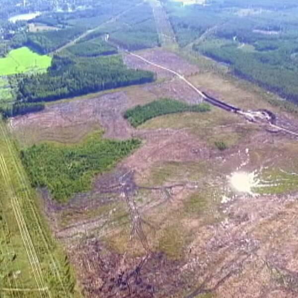 satellitkarta samt flygbild över delvis avverkad skog mm.