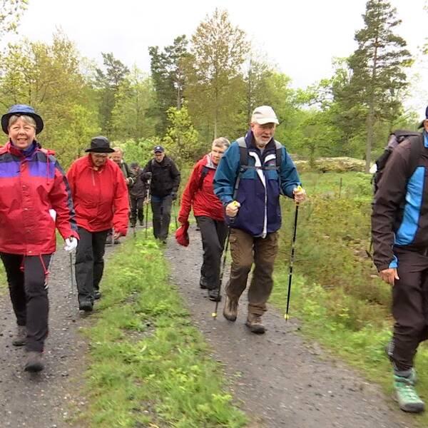 Korpengänget i Valdemarsvik är ute på promenad