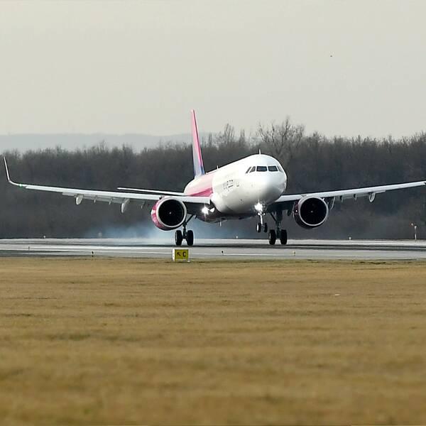 I klippet: Resebolagschefen om när flygpriserna väntas gå upp igen.