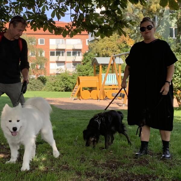 Hundägare vid Torekovsplan är oroliga och uppmärksamma efter fynd av vassa föremål.