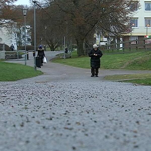 Araby ett särskilt utsatt område enligt polisen.