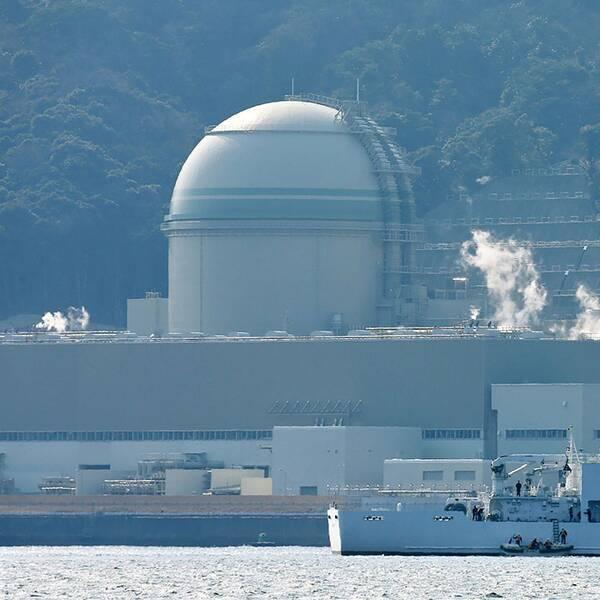 Här en kärnkraftsanläggning i Takahama.