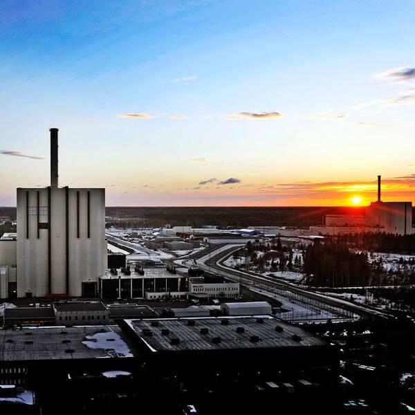 Forsmark kärnkraftsverk.