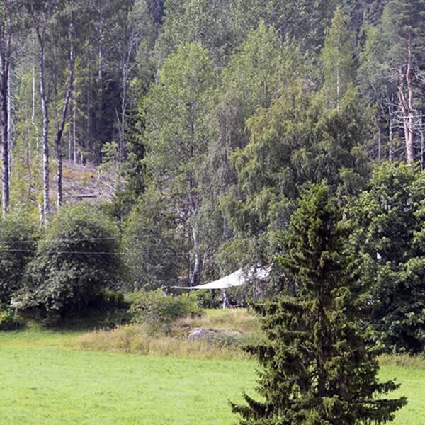 Flaggan vajar på halv stång på familjen Fälldins gård i Ramvik.