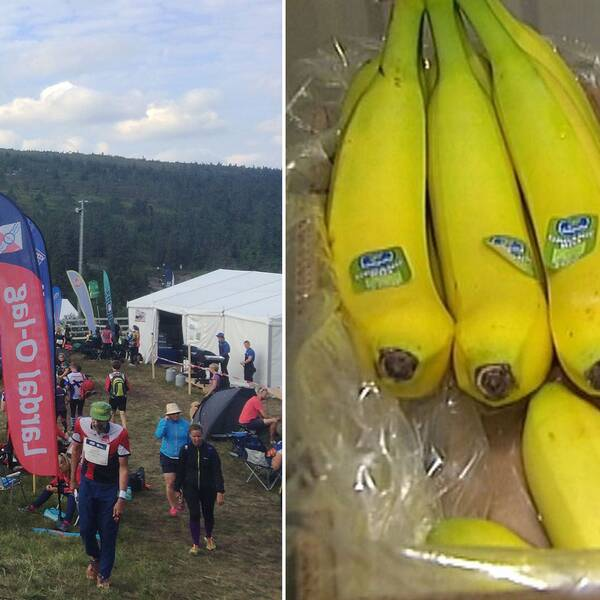 Oringen och bananer.
