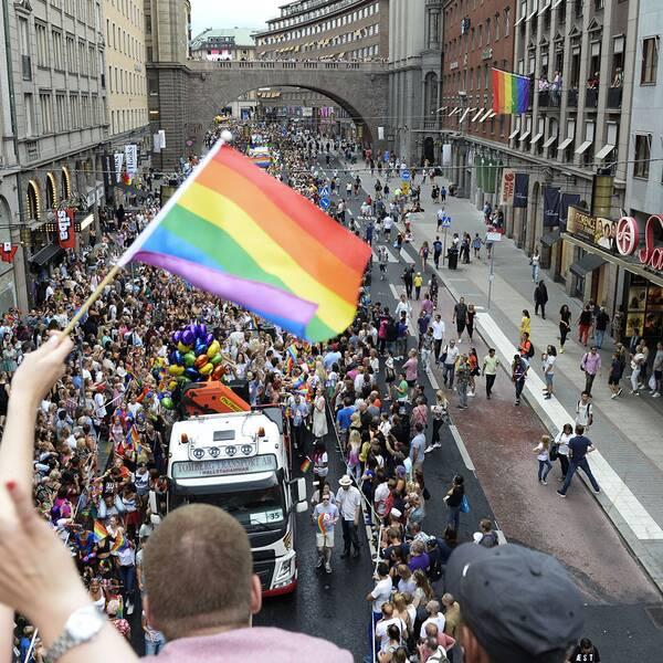 Nästan en halv miljon människor tros ha kollat på paraden.