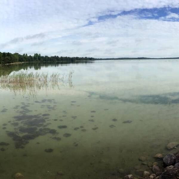 Tingstäde träsk på Gotland