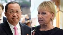 Nordkoreas utrikesminister traffade statsministern
