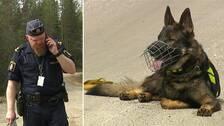 På bilden syns polisen Niklas Modig och en sökhund av rasen schäfer.