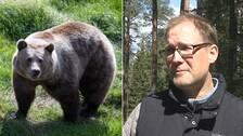 Kollage med björn till vänster och forskaren Anders Flykt till höger.