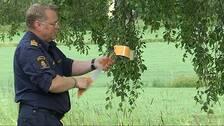 Lasse Fredin, poliskommissarie märker ut en olycka