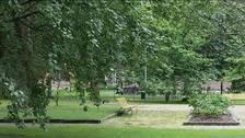 Parkbänk i park.