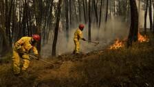Brandmän kämpar mot skogsbränder i centrala Portugal i juli.