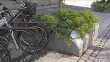 närbild på cykelställ och stenkantad plantering på gata