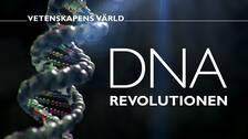 DNA-revolutionen, Vetenskapens värld.