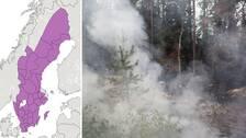 SMHI:s varningskarta visar att det är förhöjd skogs- och gräsbrandrisk i stora delar av landet (de lilafärgade områdena).