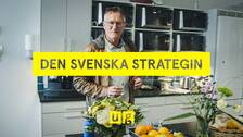 Den svenska strategin – Anders Tegnell