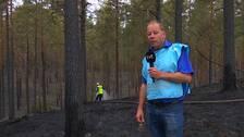Sotade och brända träd efter en skogsbrand i Mora. Svt:s reporter står i blå väst och berättar. Bakom honom syns en brandman som spolar vatten på den varma marken.