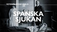 Spanska sjukan - vetenskapens värld.