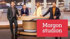 Programledarna Ted Widgren, Karin Magnusson, Carolina Neurath och Pelle Nilsson.
