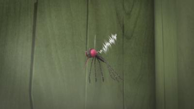 Myggjagare