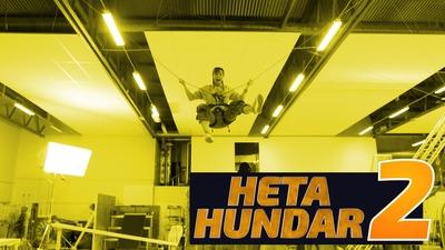Heta Hundar 2