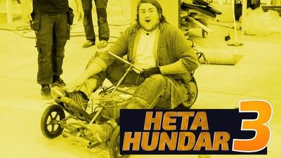 Heta Hundar 3
