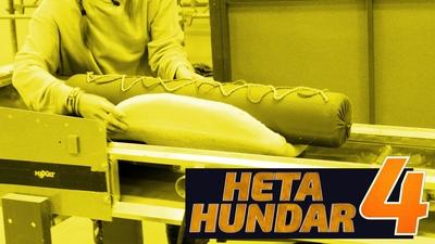 Heta Hundar 4
