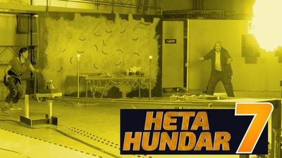 Heta Hundar 7