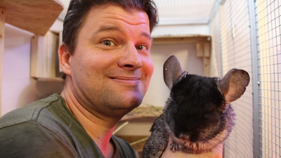 1. Chinchilla