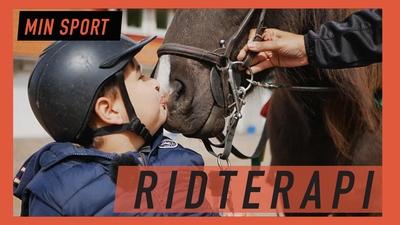 Hästarna hjälper Anton