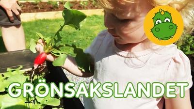 7. Grönsakslandet