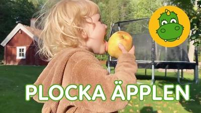 9. Plocka äpplen