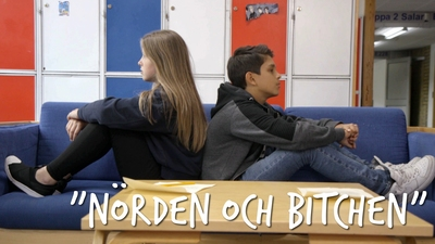 """Nörden och Bitchen"""