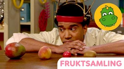 Yankho och fruktsamlingen