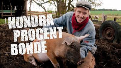 Frank med en gris i Hundra procent bonde