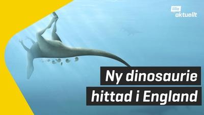 Ny dinosaurie hittad