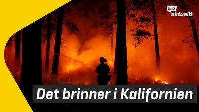 Stora bränder i Kalifornien