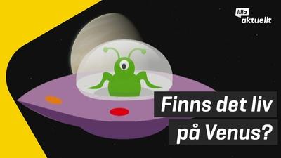 Finns det liv på Venus?