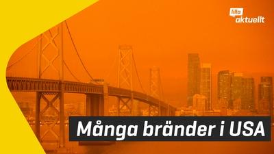 Orange himmel i Kalifornien