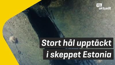 Ny undersökning av skeppet Estonia