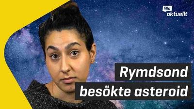 Rymdsond besökte asteroid