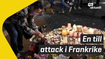 Tre döda efter attack i Franrike