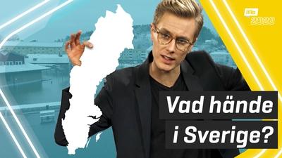 Det hände i Sverige under året