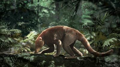 När en asteroid slog ner för 66 miljoner år sedan och satte punkt för dinosauriernas era vårades det samtidigt för däggdjuren. Till att börja med var de få och små men snart skulle de dominera jorden. Nya rika fynd av fossil inne i Colorados klippor hjälper oss att förstå hur det gick till.