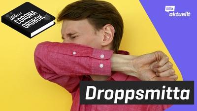 Vad betyder droppsmitta?