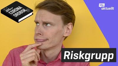 Vad betyder riskgrupp?