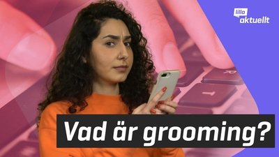 Vad är grooming?